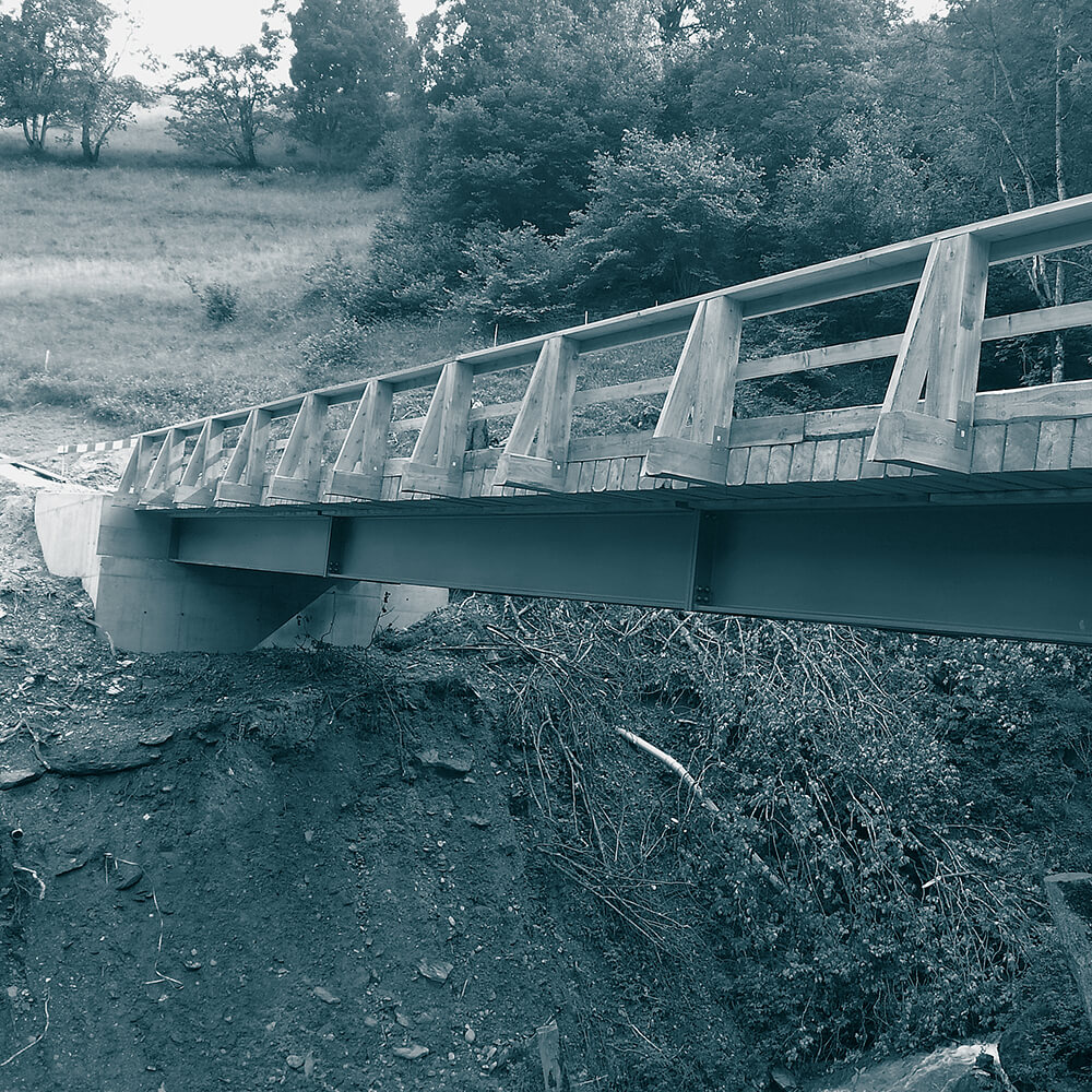 Neue Verbundbrücke Güterstrasse Nr. 1, Gesamt-melioration Pigniu